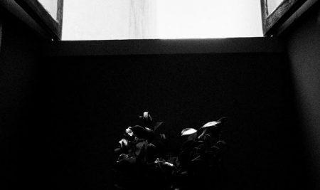 SYNAPSE   Exposição de Fotografia – Luís Barbosa